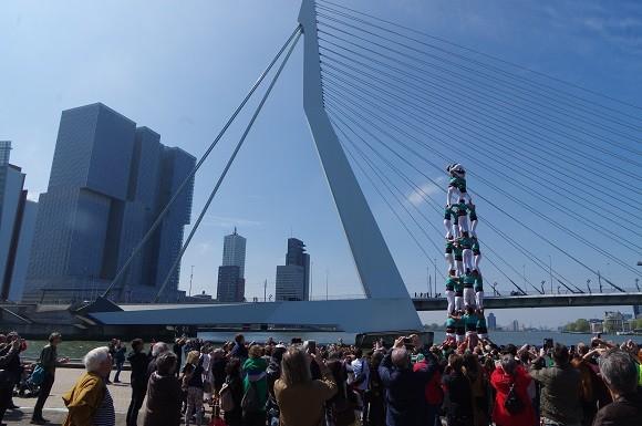 4d8 Rotterdam 2017